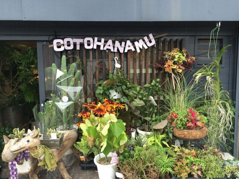 コトハナム